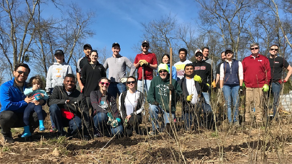bridgestone americas employees planting trees